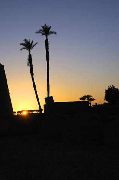 Photograph - Sunset At Luxor Egypt by Brenda Kean