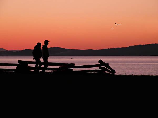 Photograph - Sunset Boulevard by Micki Findlay