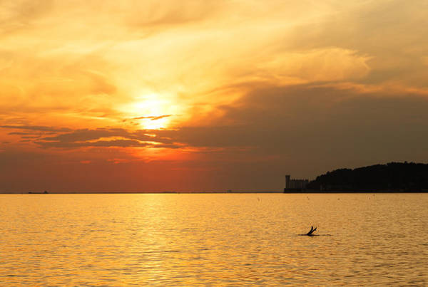 Wall Art - Photograph - Sunset Over Trieste Bay by Ian Middleton