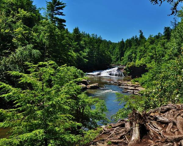Swallow Falls State Park Wall Art - Photograph - Swallow Falls by William Fox