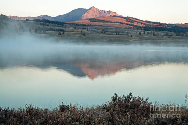Photograph - Swan Lake In Yellowstone National Park by Fred Stearns