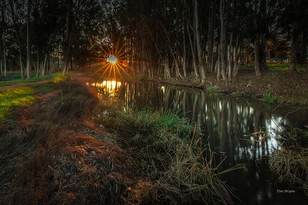 Photograph - Sweet Springs Sunrise... Los Osos by Tim Bryan