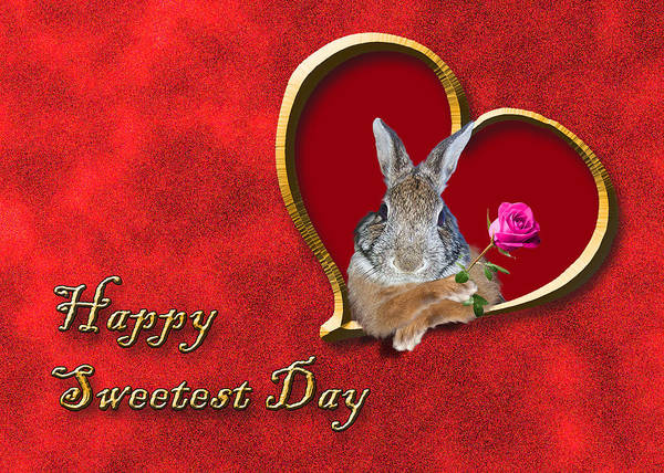 Wall Art - Photograph - Sweetest Day Bunny by Jeanette K