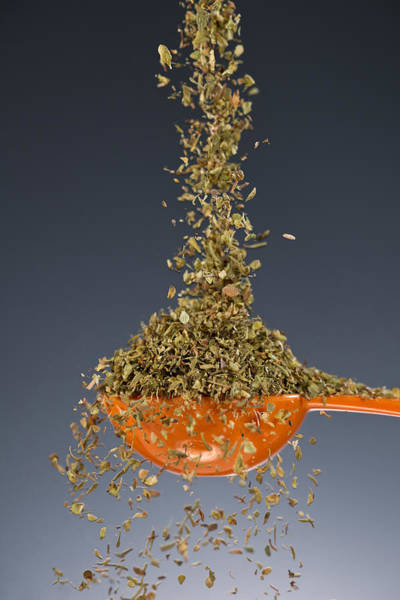 Herbs Photograph - 1 Tablespoon Oregano by Steve Gadomski