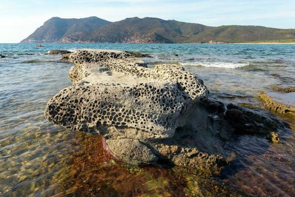 Weathering Photograph - Tafoni Weathering In Sardinia by Dr Juerg Alean