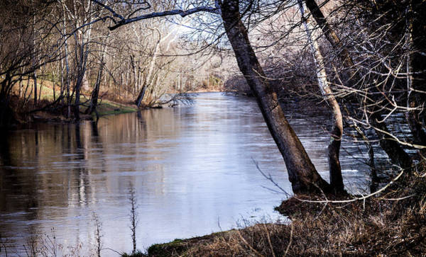 Something Different Photograph - Take Me To The River by Karen Wiles