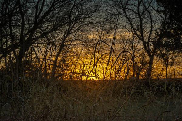 Tallgrass Wall Art - Photograph - Tallgrass Sunset by Larry Pacey