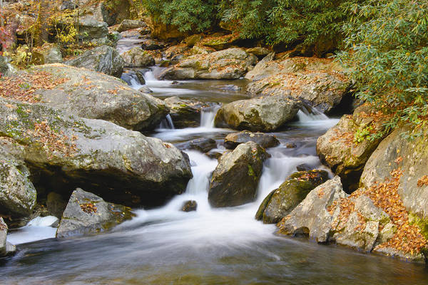 Photograph - Tallulah River by Penny Lisowski