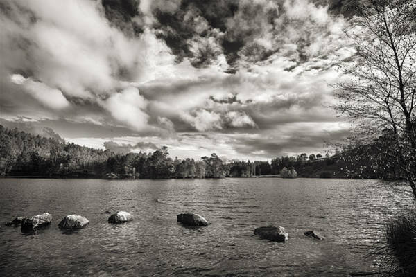Wall Art - Photograph - Tarn Hows by Graham Moore