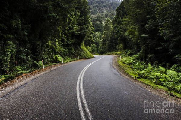 Winding Roads Photograph - Tasmania West Coast Hinterland Road Landscape by Jorgo Photography - Wall Art Gallery