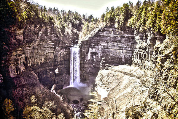 Photograph - Taughannock Gorge by William Norton