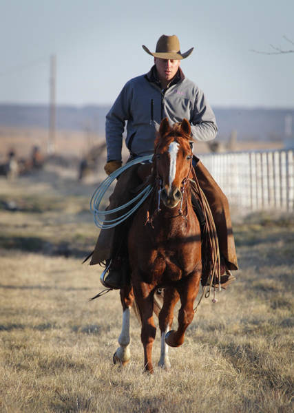 Photograph - Texas 44 by Diane Bohna