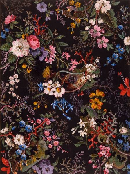 Horticulture Drawing - Textile Design by William Kilburn