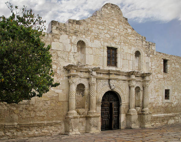 Spanish Missions Wall Art - Photograph - The Alamo by David and Carol Kelly