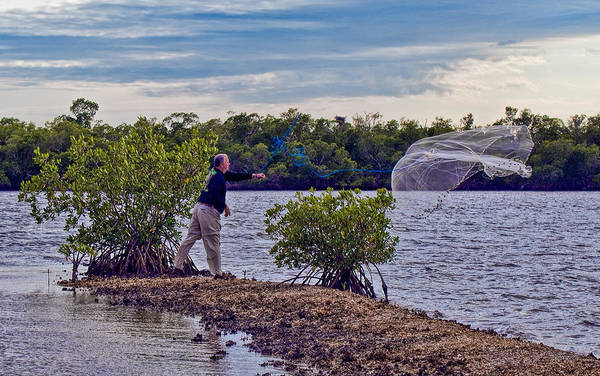Photograph - The Art Of Throwing A Cast Net by Ginger Wakem