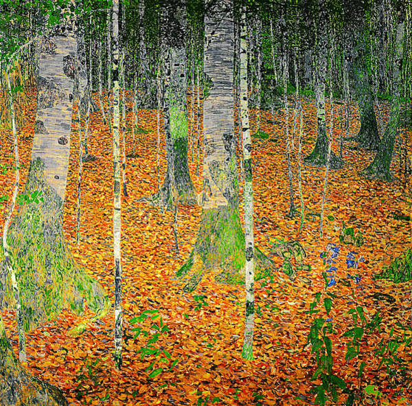 Dgt Wall Art - Painting - The Birch Wood by Celestial Images