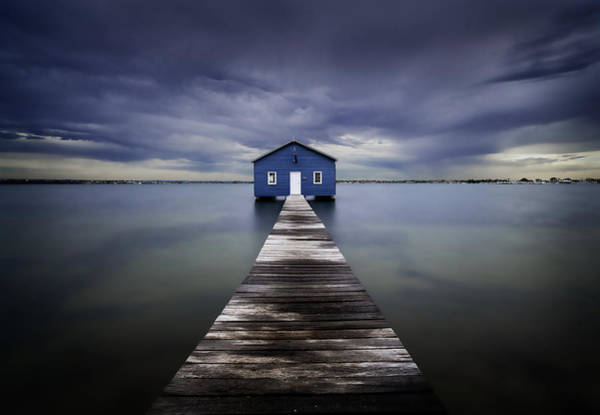 Swan Photograph - The Blue Boatshed by Leah Kennedy