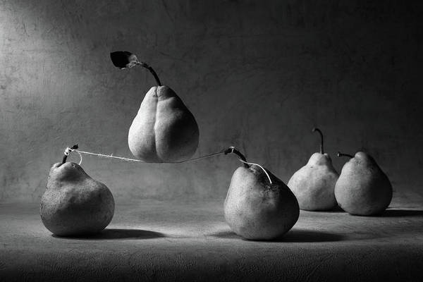 Pears Wall Art - Photograph - The Circus by Victoria Ivanova