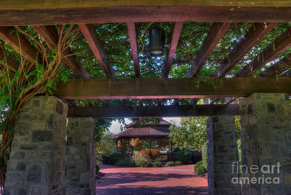 Photograph - The Entrance To The Alumni Memorial Grove by Mark Dodd