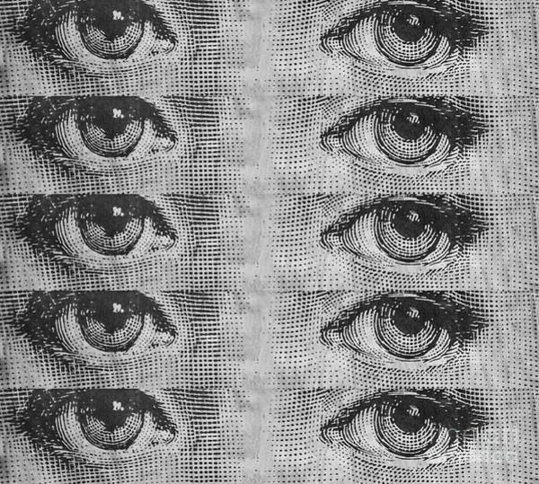 Photograph - The Eyes Have It by Edward Fielding