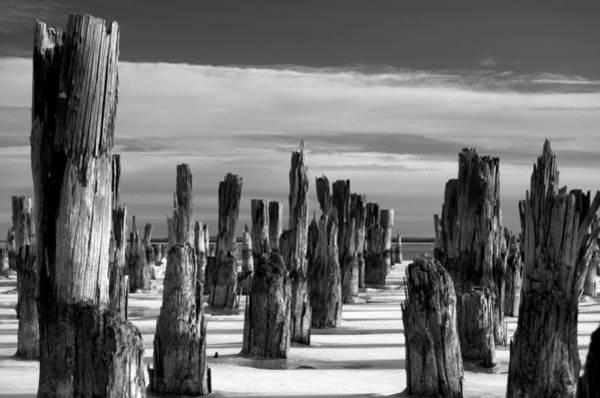 Photograph - The Forgotten by Jeremiah John McBride