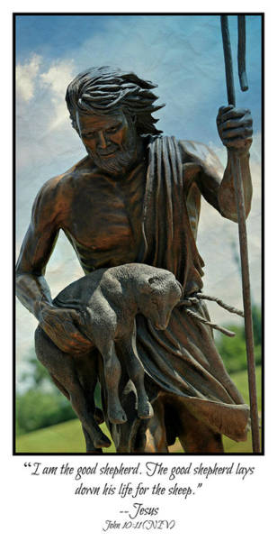 Psalms Photograph - The Good Shepherd by Stephen Stookey