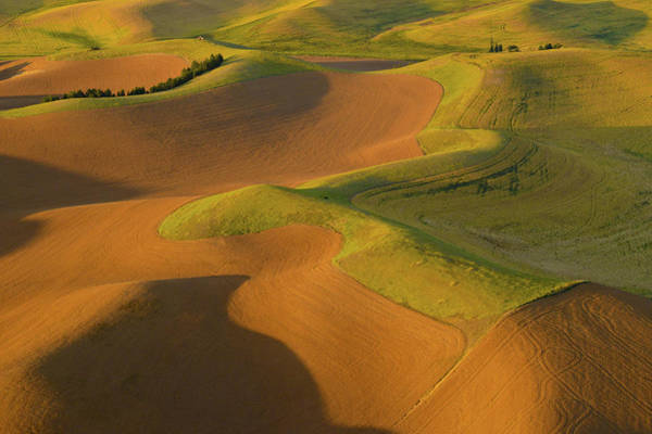 Wall Art - Photograph - The Palouse From Above by Latah Trail Foundation