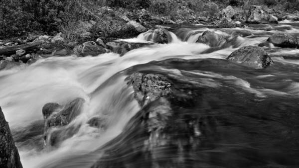 Photograph - The Rivers Muscle by Mark Lucey