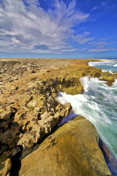 Photograph - The Rough Side Of Aruba by David Letts