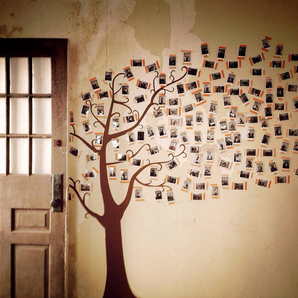 Photograph - The Surprise House by Natasha Marco