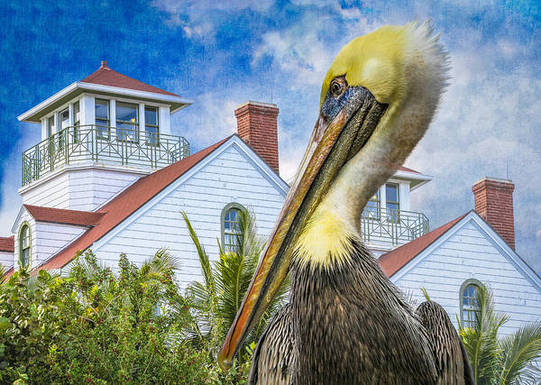 Coast Guard House Photograph - The Watch by Debra and Dave Vanderlaan