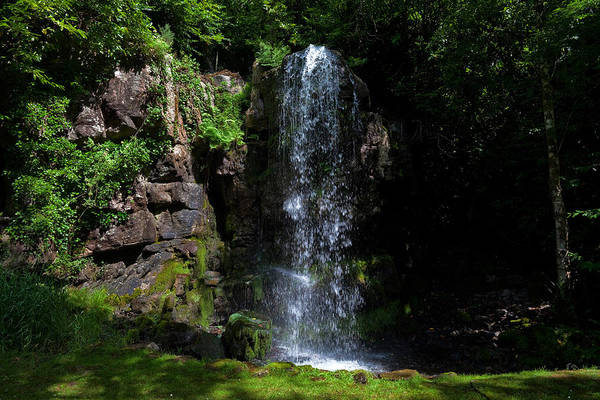 Jardin Photograph - The Waterfall, Kilfane Glen And Garden by Panoramic Images