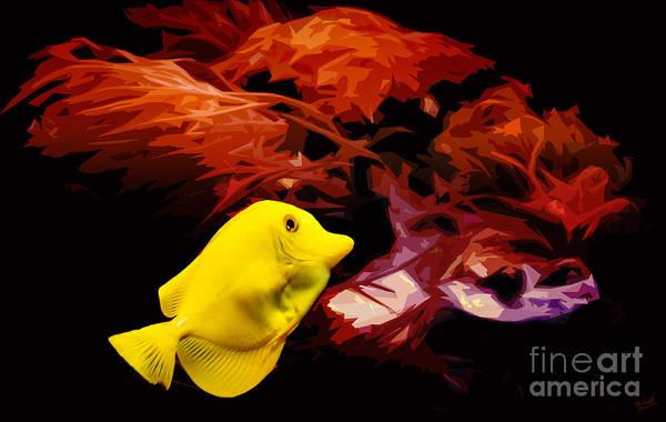 Hawaiian Fish Photograph - The Yellow Queen by Nishanth Gopinathan