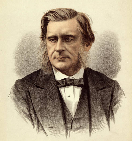 Wall Art - Photograph - Thomas Huxley by Natural History Museum, London/science Photo Library
