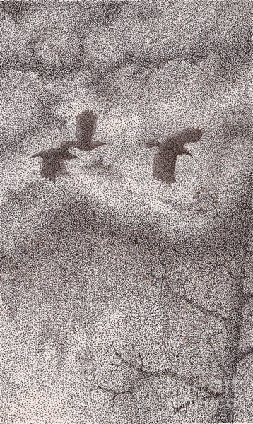 Avian Drawing - Three Crows by Wayne Hardee