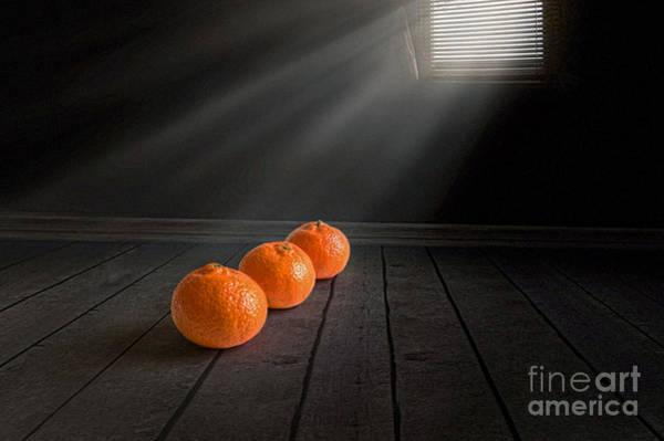 Mandarin Wall Art - Photograph - Three by Veikko Suikkanen