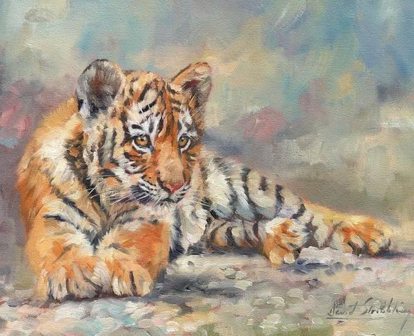 Siberian Tiger Wall Art - Painting - Tiger Cub by David Stribbling