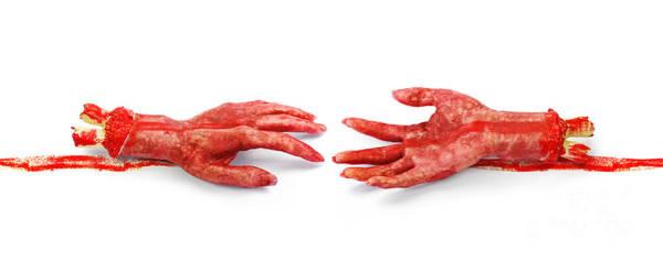 Hand Anatomy Wall Art - Photograph - Til Death Do Us Part by Jorgo Photography - Wall Art Gallery