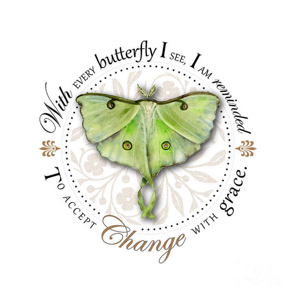 Changing Painting - To Accept Change With Grace by Amy Kirkpatrick
