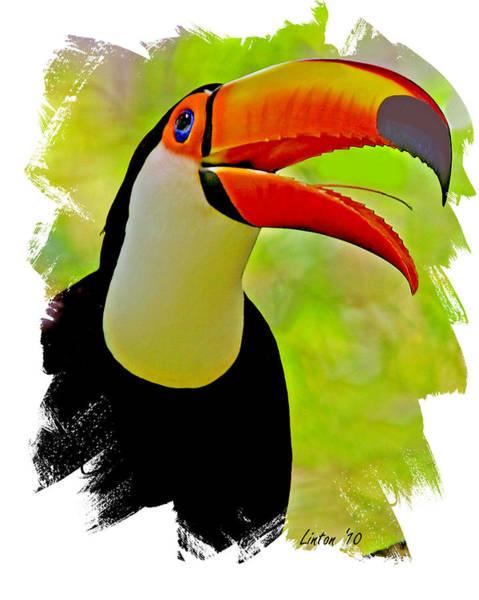 Digital Art - Toco Toucan 3 by Larry Linton