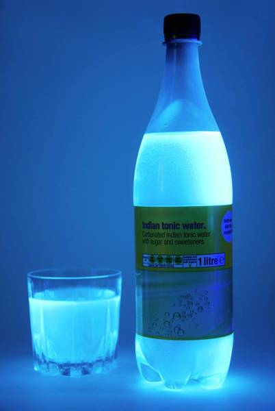 Tonic Photograph - Tonic Water In Uv Light by Cordelia Molloy/science Photo Library