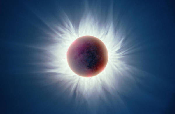 Wall Art - Photograph - Total Solar Eclipse by Dr Fred Espenak