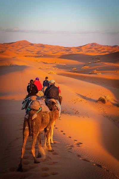 Dromedary Photograph - Tourists On Camel Safari, Sahara by Douglas Pearson / Robertharding