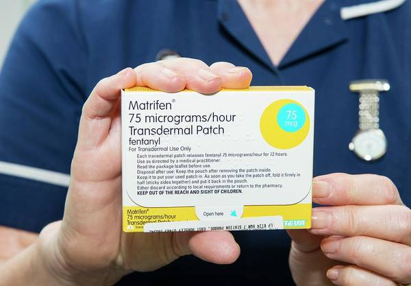 Chronic Pain Wall Art - Photograph - Transdermal Painkiller Patch by Dr P. Marazzi/science Photo Library
