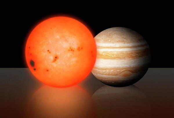 Wall Art - Photograph - Trappist-1 Compared To Jupiter by Mark Garlick/science Photo Library