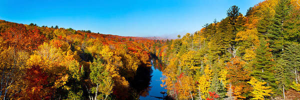 Marquette Photograph - Trees In Autumn At Dead River by Panoramic Images
