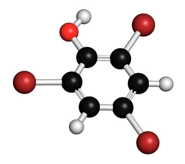Preservative Wall Art - Photograph - Tribromophenol Molecule by Molekuul/science Photo Library
