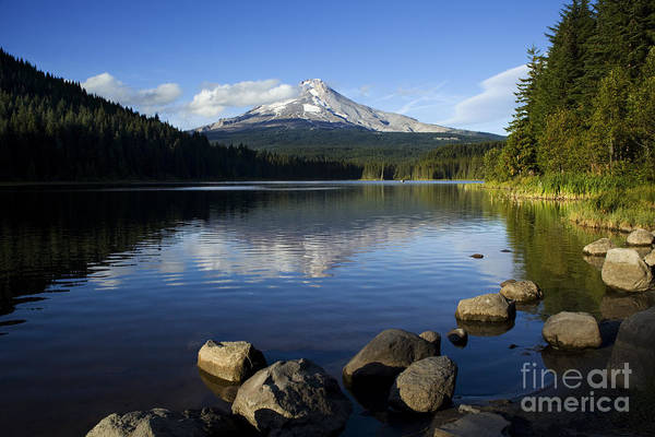 Photograph - Trillium Lake Scenic by Charmian Vistaunet