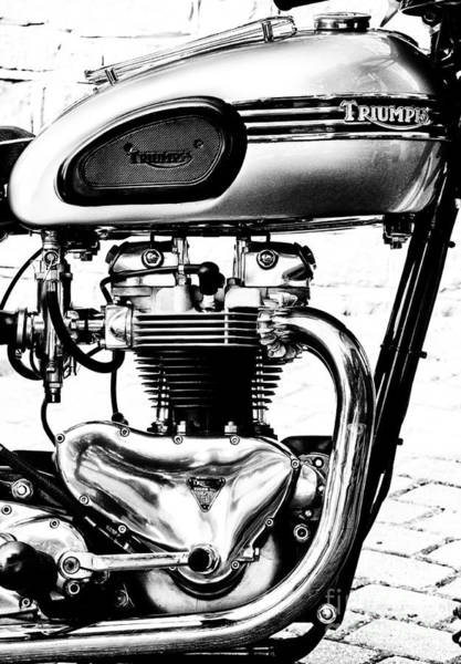 Photograph - Triumph Tiger T110 Motorcycle Monochrome by Tim Gainey