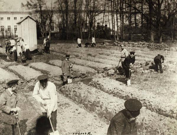 Imperial Russia Photograph - Tsarskoye Selo, 1917 by Granger